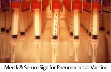 Merck & Serum Sign for Pneumococcal Vaccine
