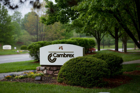 Cambrex to create process development and clinical supply center of excellence