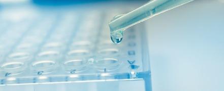 Biocompatibility & Toxicology Testing