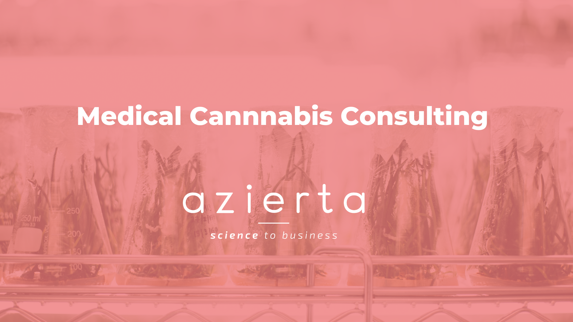 Medical Cannabis Consulting