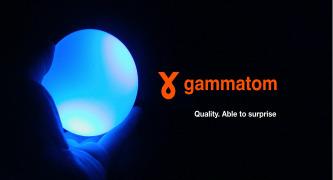 Gamma irradiation service