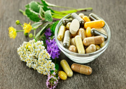 Botanical ingredient extracts for Nutraceuticals