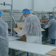 Pharmaceutical Contract Packaging
