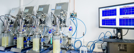 Development of chemo-enzymatic processes