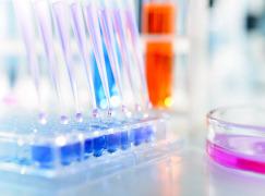 Bioanalytical Services (GLP/GCP)