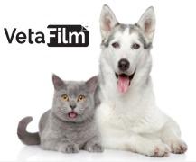VetaFilmTM - Veterinary Oral Film Technology