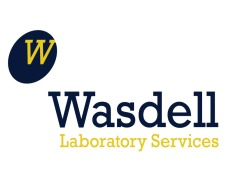 Wasdell Laboratory Services