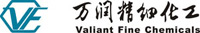 Valiant Co., Ltd.