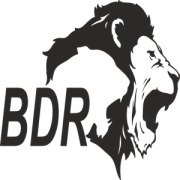 BDR PHARMACEUTICALS INTERNATIONAL PVT.