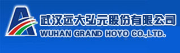 Wuhan Grand Hoyo Co., Ltd.