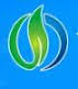Handan Huajun Chemicals Co Ltd
