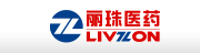 LIVZON GROUP NINGXIA NEW NORTH RIVER PHARMACEUTICAL CO., LTD.