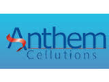 Anthem Cellutions (India) Ltd